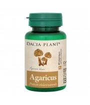 Agaricus, Dacia Plant 60 comprimate