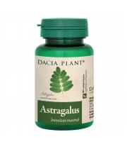 Astragalus, Dacia Plant, 60 comprimate
