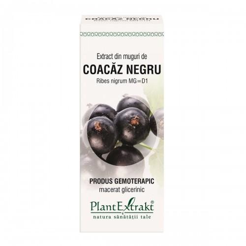 Extract din muguri de COACĂZ NEGRU - Ribes nigrum MG=D1, 50 ml, PlantExtrakt