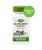 ALFA-MAX 100 CPS, SECOM