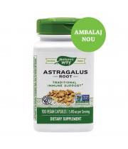 ASTRAGALUS ROOT 100 CPS, SECOM